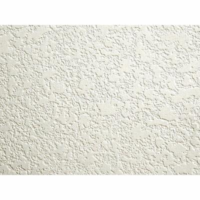 DPI 4 Ft. x 8 Ft. x 3/16 In. White Stucco Hacienda Wall Paneling
