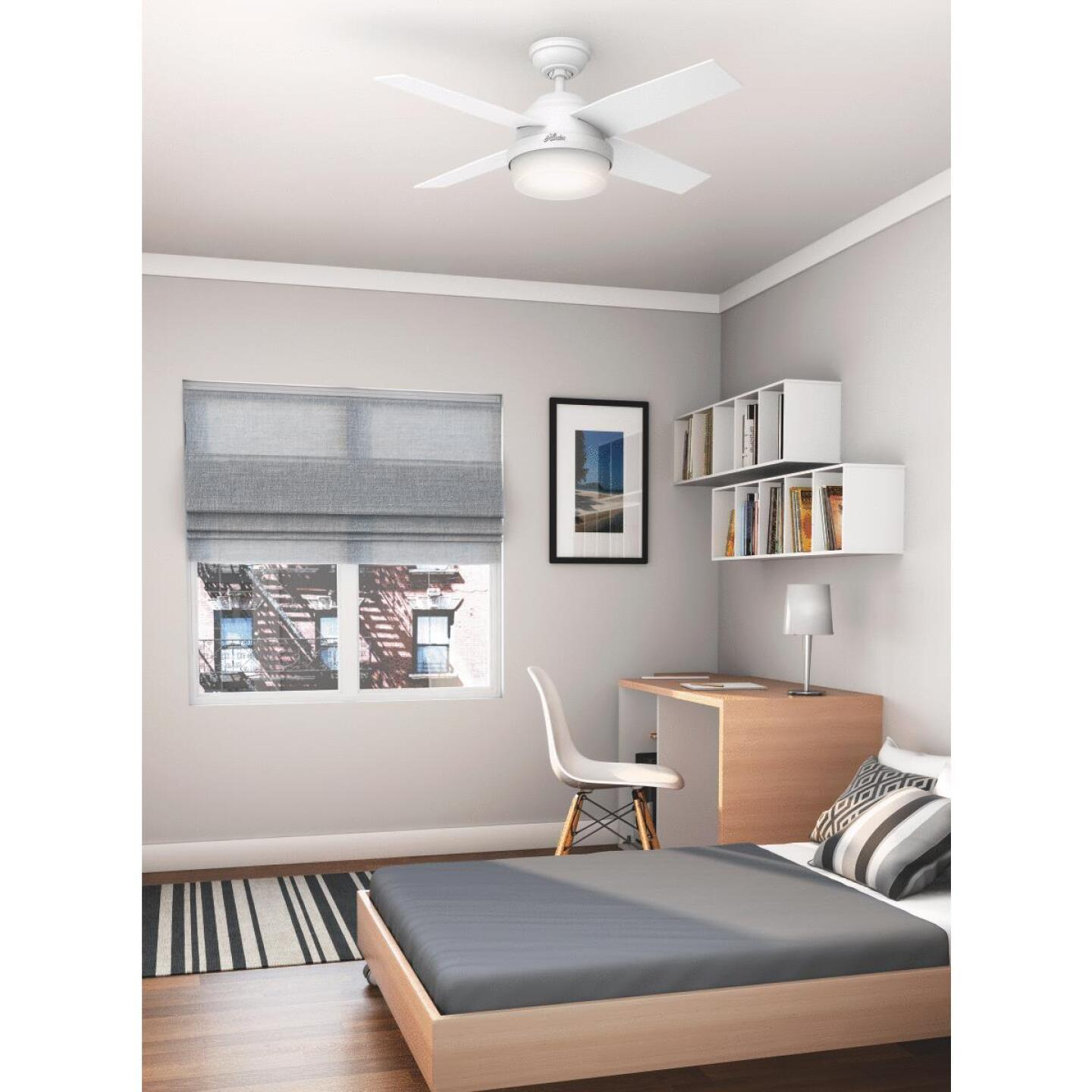Hunter Dempsey 44 In. Fresh White Ceiling Fan with Light Kit Image 3